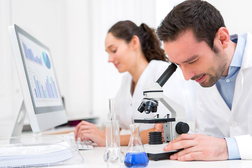 Worklab software para laboratórios de análises clínicas